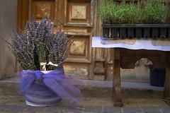 FLORACION DE LA LAVANDA (Merly_gon) Tags: fiestas festival pueblo lavanda brihuega colores azul lavander adornos mesa flores floracion olores sonya7 madrid