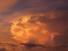 Sunset Atmospherics (zoniedude1) Tags: arizona sunset skyscape stormclouds weather monsoon stormyskies arizonamonsoon cumulonimbus sunsetatmospherics sunsetstorm phoenix sonorandesert atmosphericobservations sunsetsky thunderstorms valleyofthesun skyshow monsoonsunset evening tstorms sundown sky colorful beauty azsky monsoonseason view color summer desert phoenixsky southwest nature monsoon2018 canonpowershotg12 pspx9 zoniedude1 earthnaturelife