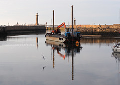 Whitby Harbour Reflections (.annajane) Tags: whitby harbour yorkshire panorama northyorkshire coast harbor water sea reflection bird seagull lighthouse boat