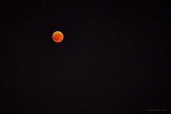 Crveni mjesec (3) (MountMan Photo) Tags: crvenimjesec bloodymoon pomrčinamjeseca rijeka astronomija fotografijemjeseca astronomy theeclipseofthemoon 2772018
