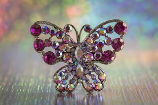 rainy day butterfly for macro mondays 'trinkets'