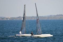 800_4956 (Lox Pix) Tags: queensland qld australia catamaran trimaran hyc humpybongyachtclub winterbash loxpix foilingcatamaran foiling bramblebay sailing race regatta woodypoint boat