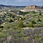 There's an Expedition We're All On (Theodore Roosevelt National Park) thumbnail