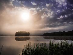 Summer misty morning - Sielpia. (Andrzej Kocot) Tags: landscape landscapes fog foggy lake lagoon trees andrzejkocot water sky tree mist olympus surreallandscape