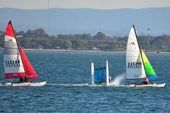 800_4777 (Lox Pix) Tags: hobie16 catamaran queensland qld australia woodypoint bramblebay hyc humpybongyachtclub winterbash regatta sailing