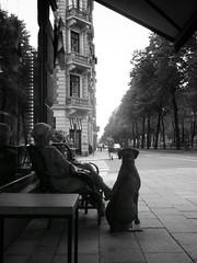 Stockholm (D | S) Tags: ricoh gr grd digital iv street streetphotography streetphoto blackandwhite blackwhite bw monochrome dog