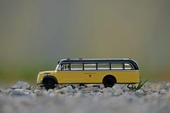 ÖSTERREICHISCHE POST (LitterART) Tags: post österreich österreichischepost gräfstift 145 gräfstift145 lkw lorry lastkraftwagen bus postbus yellow black gelb schwarz nikon d800 fx nikond800