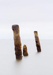 The Endings (John Westrock) Tags: longexposure minimalism minimal pillars water smooth white oceanshores washingtonstate pacificnorthwest canoneos5dmarkiii canonef100400mmf4556lisusm bwnd1000x