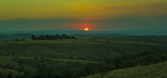 Pôr do Sol (Fotografia RG) Tags: pôrdosol sunset sol photonature fimdetarde finaldetarde natureza campo arvore paisagem céu grama green verde nuvem nuvens canont2i canon t2icanon 1855