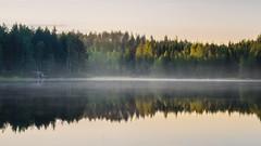 Summer Sunrise (MattiBo) Tags: sunrise scandinavia suomi summer longexposure reflection travel trees tranquil beautiful finland forest fog järvi nikon landscape landscapes light le outdoor colors