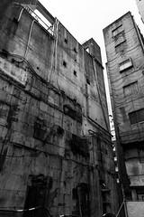 Ginza behind the scenes-6 (tokyobogue) Tags: tokyo japan ginza nikon nikond7100 d7100 sigma sigma1750mmexdcoshsm behind backstreets street streetphotography urban city blackandwhite blackwhite monochrome construction