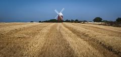Halnaker Windmill (jasty78) Tags: halnakerwindmill windmill field hay halnaker chichester westsussex england nikond7200 sigma350mmf14 panorama