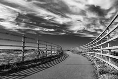 Shadows (Howie Mudge LRPS BPE1*) Tags: sky dramaticsky fence path shadows tywyn gwynedd wales cymru uk mono monochrome blackandwhite sony sonya6300 sonyilce6300 sony18135mm sonyalpha sonyalphagang sonylove travel summer summervibes