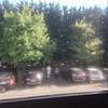 IMG_8784 (CotofisH) Tags: trip