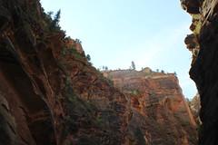 IMG_3712 (Egypt Aimeé) Tags: narrows zion national park canyons pueblos utah arizona