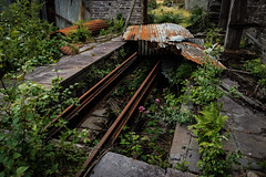Rails, Quarry Workshop, Pen yr Orsedd (Rogpow) Tags: nantlle penyrorseddquarry slatequarry wales yfron workshop rails rusty overgrown abandoned derelict decay disused dilapidated ruin industrialhistory industrialarchaeology industrial industry fujifilm fuji fujixpro2 northwales snowdonia slate