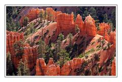 Brice Canyon (diaph76) Tags: extérieur paysage landscape arbres trees parc roche rock etatsunis