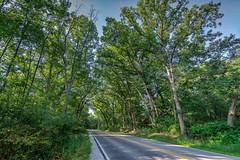 RusticRoad (jmishefske) Tags: 2018 nikon d7100 burlington wisconsin county july racine wisdot road rustic honeylakerd