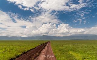 infinite roads