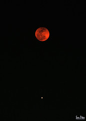 between moon and mars (Sam Petar) Tags: baghdad moon mars iraq nikon space sky p510