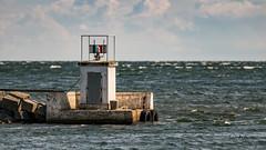 DSC04255.jpg (fotolasse) Tags: sonykarlshamnfåglarstorm karlshamn storm blåst vatten rågar hamn hav sjö båtar water sea birds rocks klippor