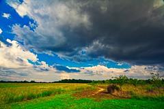 IMG_8867 (Desmojosh) Tags: laurel run park nj new jersey clouds sky blue dark rain could canon eos m sigma 1020mm 456