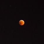 Blood Moon thumbnail