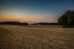 Dusty Sunset (Fotos aus OWL) Tags: trockenheit ostwestfalen lippe feld grubbern farming landwirtschaft landschaft