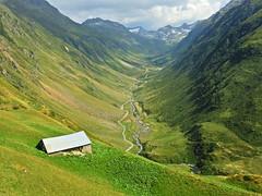Valle del Unteralpreuss (Mono Andes) Tags: andermatt suiza schweiz alpes alps uri