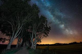 """Milky Way & Perseid Meteor Shower 2018"" – The Dark Hedges"