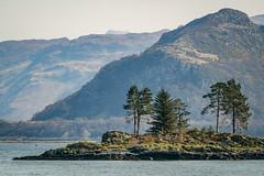 Tiny Island off Plockton (golferdave2010) Tags: island mountains plockton rocks scotland trees 2009 sea