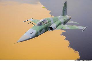 F-5EM do 1º/4º GAV