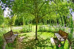 1376 Val de Loire en Août 2017 - Fougères-sur-Bièvre, le château et son jardin (paspog) Tags: fougèressurbièvre valdeloire france castle schloss garden garten 2017 château jardin