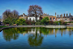 Spring at Greenwich Park (Jocelyn777) Tags: reflections waterreflections landscapes greenwich greenwichpark london textured