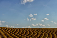 new horizon (_andrea-) Tags: sunlight bluesky clouds acker segelflugzeug sonyalpha7mii objektiv mount outdoor carlzeiss planart1450 heaven
