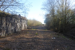 Old railway trackbed / site of Treeton junction  Sheffield  (former SDR route)   April 2018 (dave_attrill) Tags: catcliffe sheffield railway line disused trackbed remains goods sdr treeton junction oldroad ballast stone piers bridge april 2018 sheffielddistrictrailway southyorkshire
