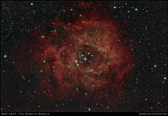 NGC2237, the Rosette Nebula (2018-07-21 edit) (Andries Cafmeyer Astrophotography) Tags: astro astronomy star stars nebula dso deepsky deepskyobject astrophotography ngc2237 ngc2238 ngc2239 ngc2244 ngc2246 sh2235 emission lightyears celestron cgx skywatcher explorer 150pds canon eos 6d mark ii eos6dmarkii 6d2 zwo asi 120mm astrophotographytool phd2 astropixelprocessor photoshop astronomytools astrometrydotnet:id=nova2677840 astrometrydotnet:status=solved