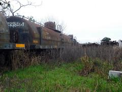 Trenes abandonados. Patio Sorrento. Belgrano (Luty Sartori) Tags: trenes abandonados patio sorrento belgrano ferrocarriles argentinos rosario train stations