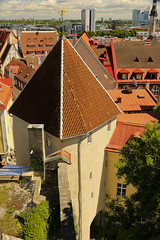 A9844TALLb (preacher43) Tags: tallinn estonia lower old city building architecture history room chimney tower walls trees sky clouds