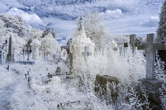 Residents of the Past (James Etchells) Tags: arnos vale garden cemetery bristol city urban victorian past residents infrared ir landscape landscapes tombs grave stones stone sky clouds color colour photography surreal south west england uk britain explore exploring