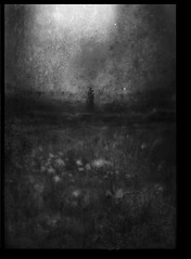Lovers (andredekok) Tags: darkness lovers night mystery blackandwhite monochrome field couple textures