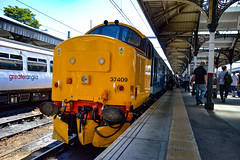 37409 + 37407 - Norwich - 30/06/18. (TRphotography04) Tags: br large logo tractors drs 37409 lord hinton 37407 stand norwich after working 2p53 1041 great yarmouth