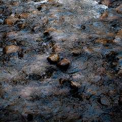 In Canyons 255 (noahbw) Tags: d5000 nikon utah virginriver zionnationalpark abstract autumn canyon natural noahbw ripples river rock rocks square stone stones water
