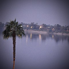 Magical Places and Things - Egypt- The Nile (6) (The Spirit of the World ( On and Off)) Tags: luxor eygpt river nile thenile africa middleeast bluehour dusk reflections lights palm palmtree banksofriver ancient historical historyofegypt town