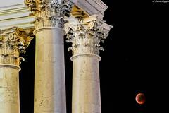 Sei apparsa tra i capitelli corinzi, non argentea, ma infuocata per mostrare lo splendore, il mistero, l'infinito universo. (BORGHY52) Tags: estate eclisse luna luglio capitello stilecorinzio notte eclisselunare basilica superga torino italy