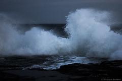 twilight series 2011  #3664 (lynnb's snaps) Tags: 2011 digital motionblur nature ocean waves coast colour rocks sydney australia breakingwave bluemood moody