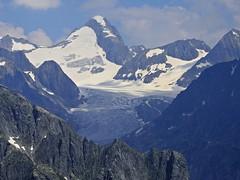 Oberaarhorn - 3629 mts. (Mono Andes) Tags: suiza schweiz valais glaciar glacier alpes alps glaciarfiesch oberaarhorn