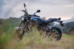 俺 の XSR900 - 11 (Cheng-Xun Yang) Tags: xsr900 yamaha xsr mtm850 バイク ヤマハ motorcycles