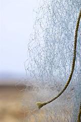 2194: Fishing Net (Atul Sabnis) Tags: flickr beach fishing net kelwe pankot konkan mh india maharashtra wire detail blue rope yellow knots