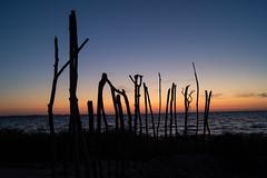 Strand (martha hoo) Tags: strand beach natur nature sunset sonnenuntergang sonyalpha mecklenburgvorpommern ostsee ä